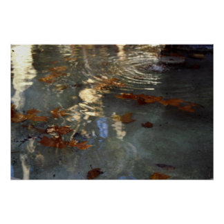 Autumn leaves in Provence Poster