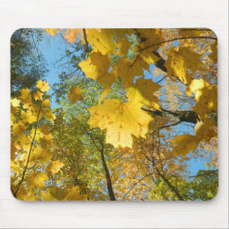 Autumn Leaves in The Sky Mouse Pad