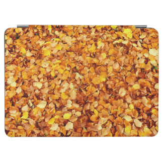 Autumn Leaves iPad Cover