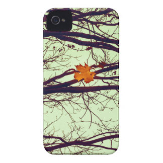 Autumn Leaves iPhone 4 Cases