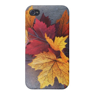 Autumn Leaves iPhone Case Covers For iPhone 4