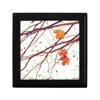 Autumn Leaves Jewelry Box