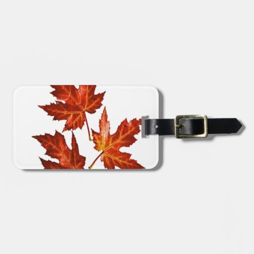 AUTUMN LEAVES TAGS FOR LUGGAGE