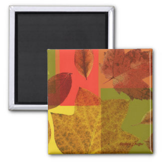 'Autumn Leaves' Magnet