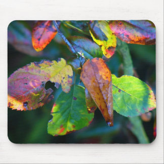 Autumn Leaves Mousemat Mouse Pad