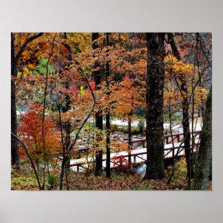 Autumn Leaves on Trees in Arkansas Value Poster