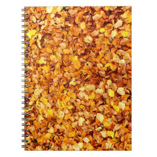 Autumn Leaves Photo Notebook
