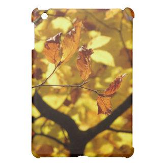 Autumn leaves photo print case for the iPad mini
