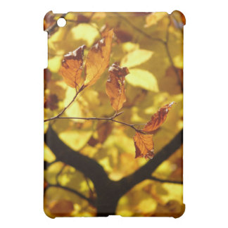 Autumn leaves photo print iPad mini covers