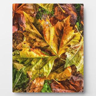Autumn leaves plaque