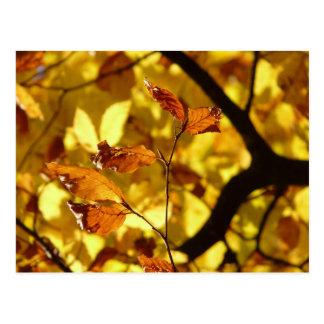 Autumn leaves postcard yellow mustard