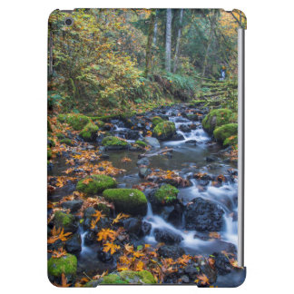 Autumn Leaves Scattered Along Gorton Creek Cover For iPad Air