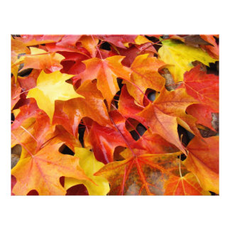 Autumn Leaves Scrapbooking paper Fall Leaves