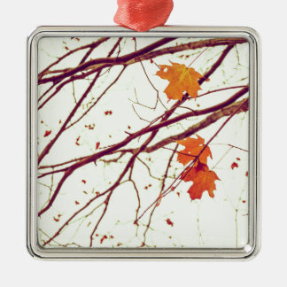 Autumn Leaves Silver-Colored Square Ornament