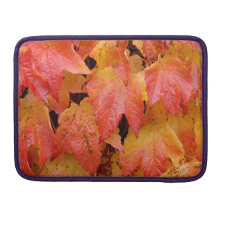 Autumn Leaves Sleeves For MacBook Pro