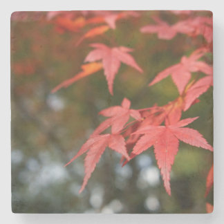Autumn Leaves Stone Coaster
