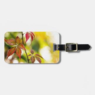 Autumn Travel Bag Tags