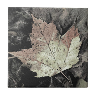 Autumn Maple Leaf Art Tile