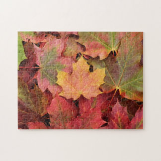 Autumn maple leaves jigsaw puzzle