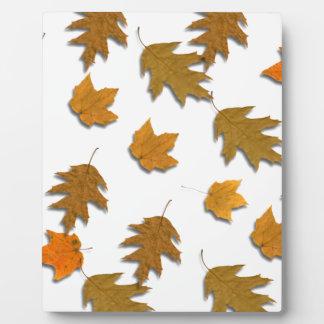 Autumn maple leaves plaque