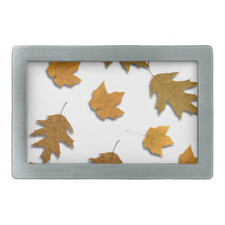 Autumn maple leaves rectangular belt buckle