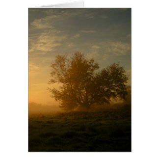 Autumn Mist Card
