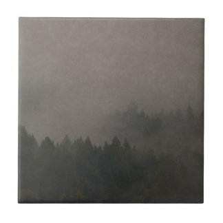 Autumn Moods Misty Forest Photo Art Nature Scene Tile