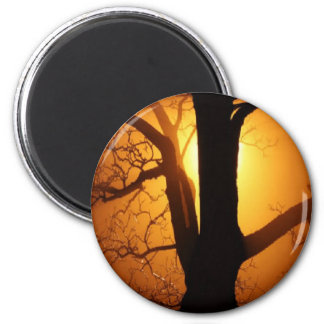 Autumn Moon Shining Through the Tree 2 Inch Round Magnet