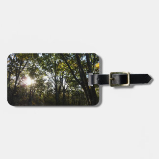 Autumn Morning at Shenandoah National Park Luggage Tag