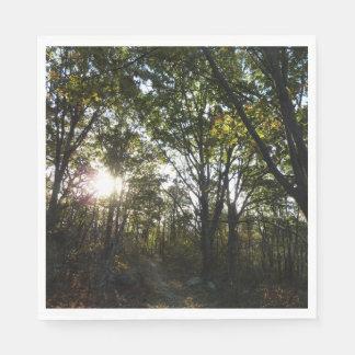 Autumn Morning at Shenandoah National Park Paper Napkin