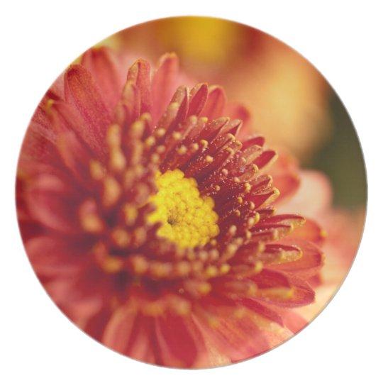 Autumn Mum Flower Plate