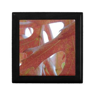 Autumn Oak Leaves Gift Box
