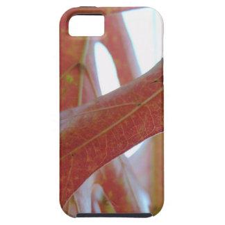 Autumn Oak Leaves iPhone 5 Case