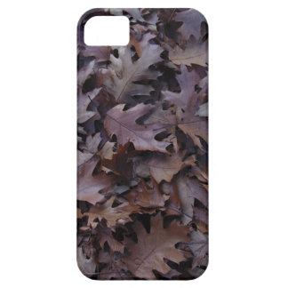 Autumn Oak Leaves iPhone 5 Covers