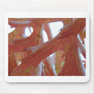 Autumn Oak Leaves Mouse Pad