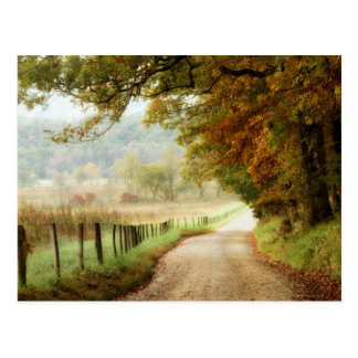 Autumn on a Country Road Postcard