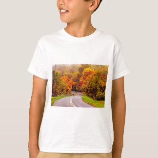 autumn on blue ridge parkway T-Shirt