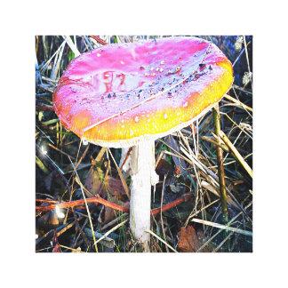 Autumn - Paddenstoel fantasia canvas