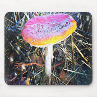 Autumn - Paddenstoel fantasia mousepad