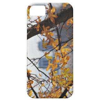 Autumn Paris Notre Dame IPHONECASE iPhone 5 Cover