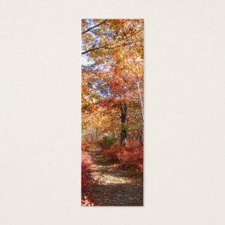 Autumn Path 27 ~ profile card