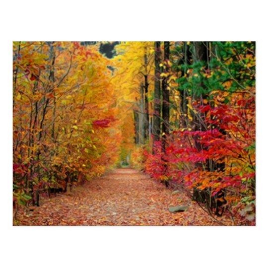 Autumn pathway,postcard postcard