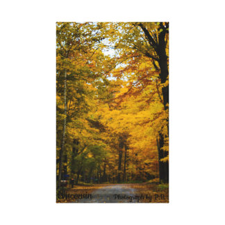 Autumn Photographs Canvas Print