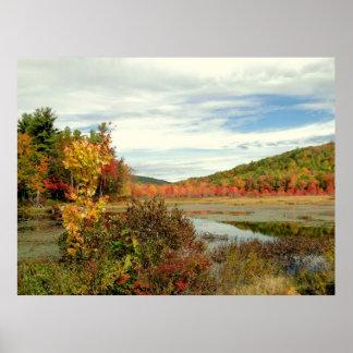 Autumn Pond Foliage Photography Poster