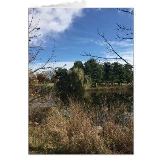 Autumn Pond Pine Trees Card