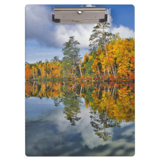 Autumn pond reflections, Maine Clipboard