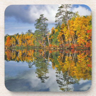 Autumn pond reflections, Maine Coaster