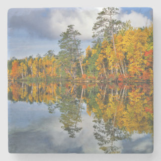 Autumn pond reflections, Maine Stone Coaster