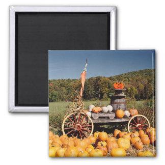 Autumn Pumpkin Farm magnet
