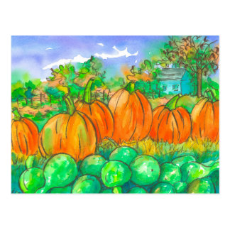 Autumn Pumpkin Gourds Harvest Watercolor Postcard